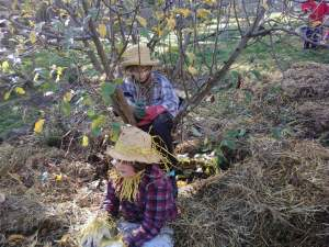 a visit to the fruit tree scarecrows provides valuable insight for parent visitors