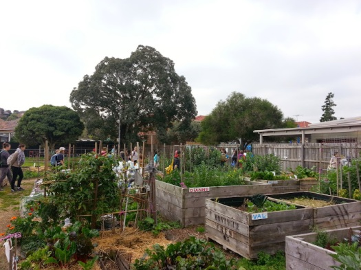 brunswick food forest