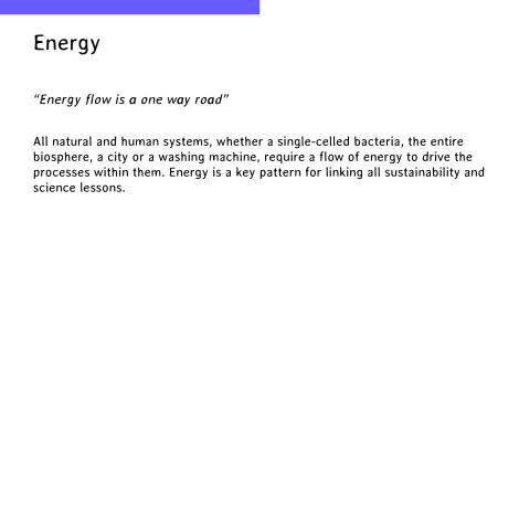 energy flow intro