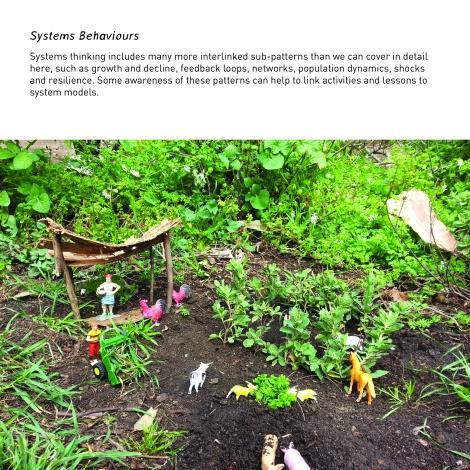 systems behaviours